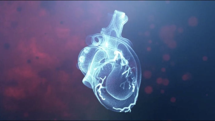 An screenshot of the Heartflow story video showing a white heart