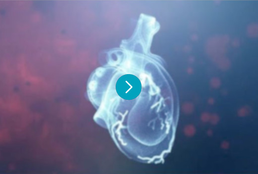 A screenshot from the Heartflow story video, indicating a link to watch the video